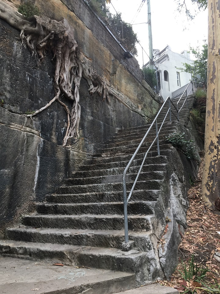 old steps in city cut into a hill with tree roots pushing through