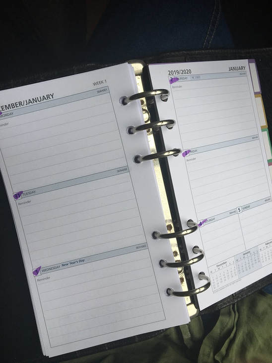 Diary pages open at  January 2019