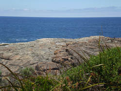 Photo of sky, sea, rock and plants at Greens Pool