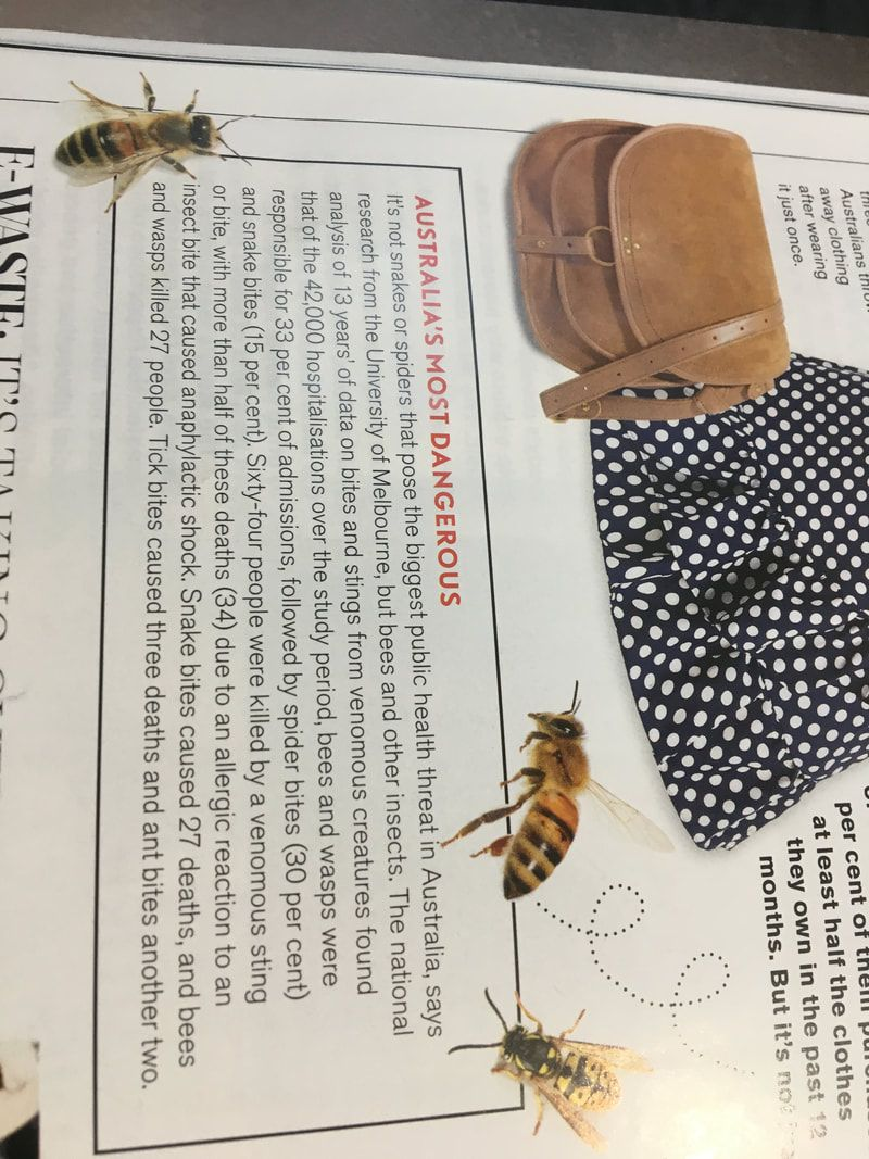 Magazine article about bees and wasps causing 33% of hospital admissions